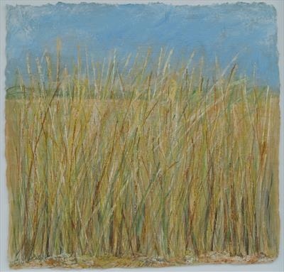 Grasses move in the summer breeze...